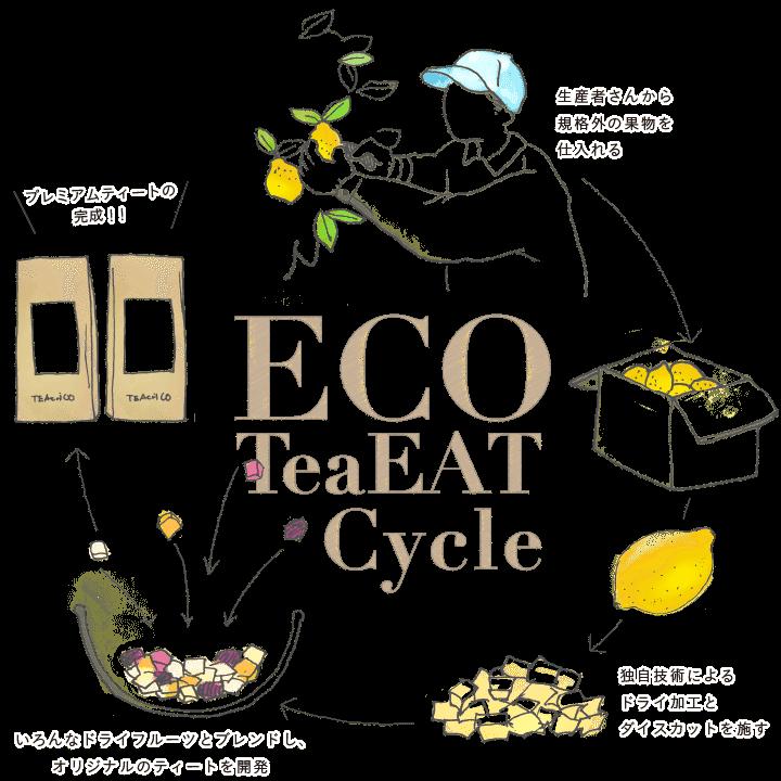 eco tea cycle